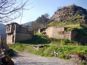 Tarakli014